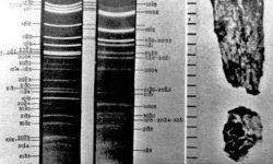 frammenti di ufo